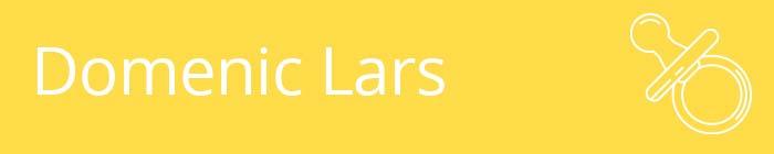 Domenic Lars