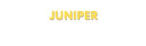 Der Vorname Juniper