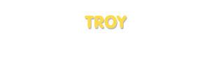 Der Vorname Troy