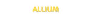 Der Vorname Allium