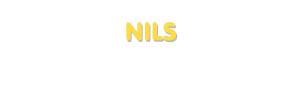 Der Vorname Nils